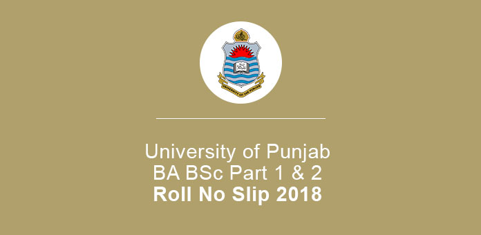 University Of Punjab Roll No Slip 2018 BA BSc Part 1 & 2