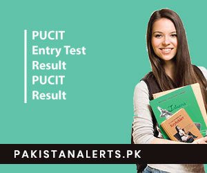 PUCIT Entry Test Result 2020